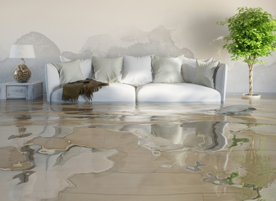 What Are the Effects of Water Damage in the Home?