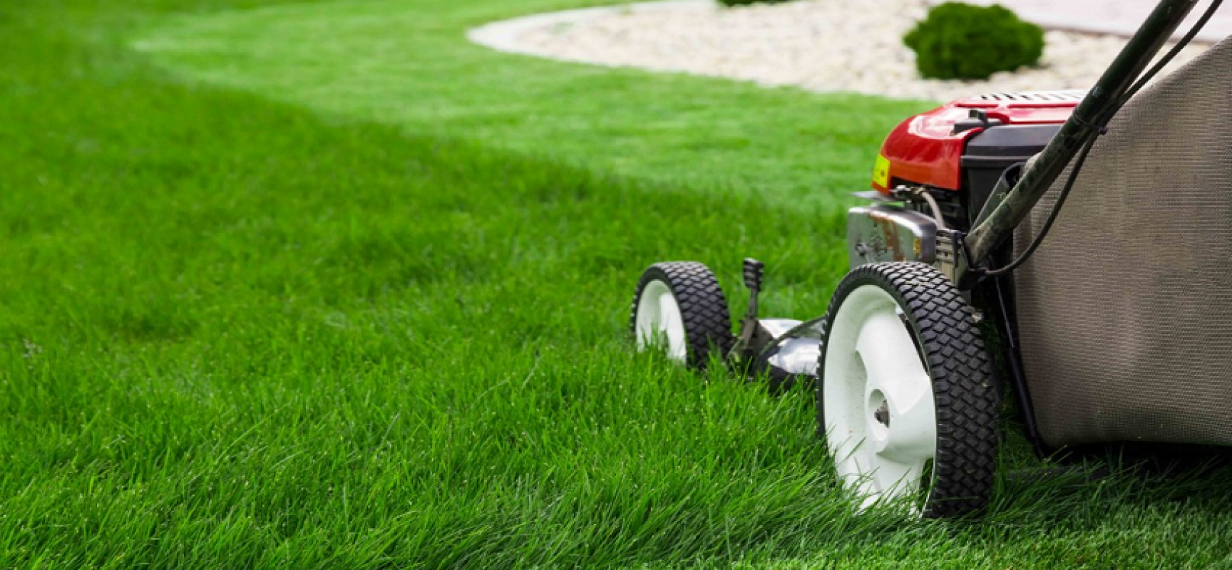 TruGreen Lawn Care Provides Top Tips on Finding a Lawn Service