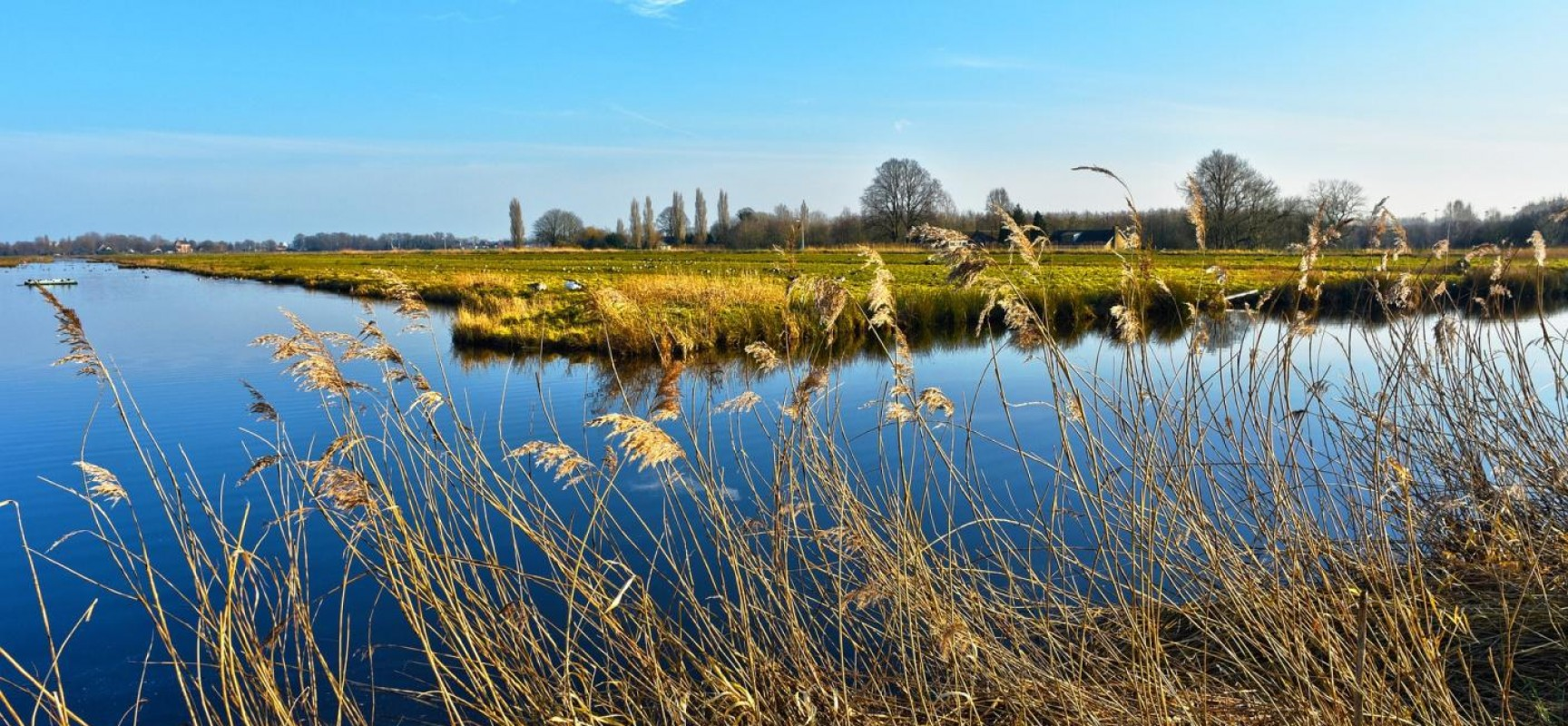 Compulsory Purchase Procedures 101: What You Need to Know