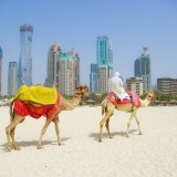 Best Tourist Attractions to Visit in the UAE